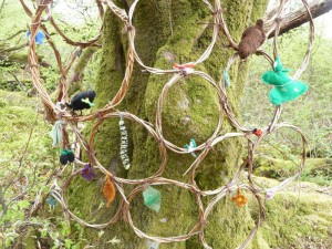 Woolly Woods 15 a 001