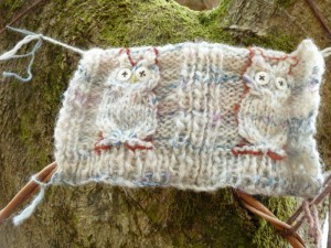 Woolly Woods 15 a 002