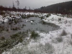 snowy feb 13